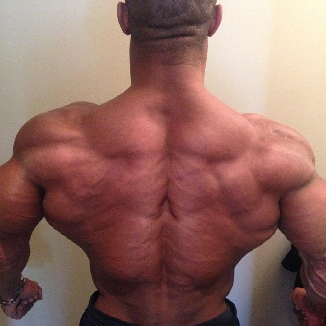 Name:  tricky jackson 7 days out from the 2014 tampa pro 212 class.jpg