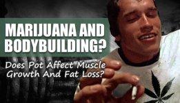 marijuana-bodybuilding.jpg