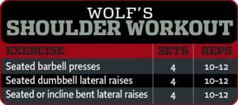 Dennis Wolf Shoulders.png