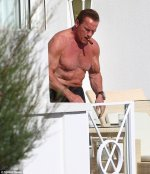 Arnold in Canne 2014.jpg