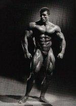 Milos Sarcev Bodybuilding Bio and profile.jpg