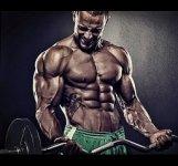max-muscle.jpg