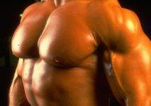 guess-the-bodybuilder.jpg