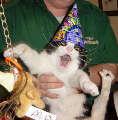 Happy birthday Pain