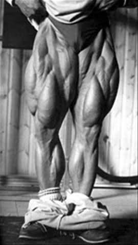 MuscleMecca's Top 20 Leg's Ever