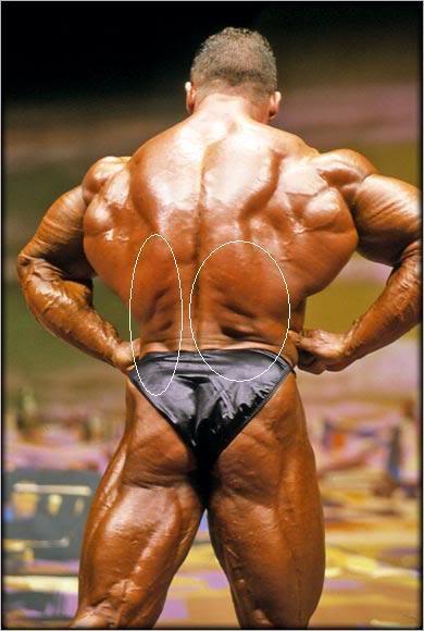 Jay Cutler's lower back wrinkles