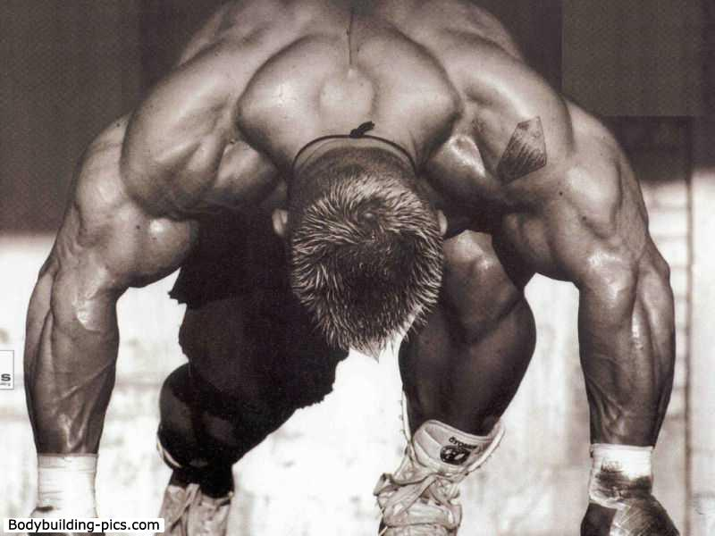 Post your pics and clips of Lee Priest