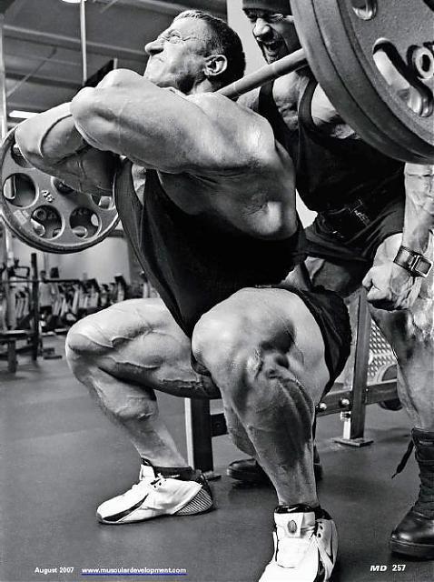 MONSTER LEG TRAIN BRANCH AND MARKUS