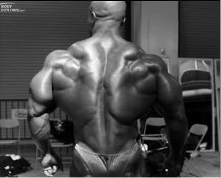 Olympia 2008 behind the scenes