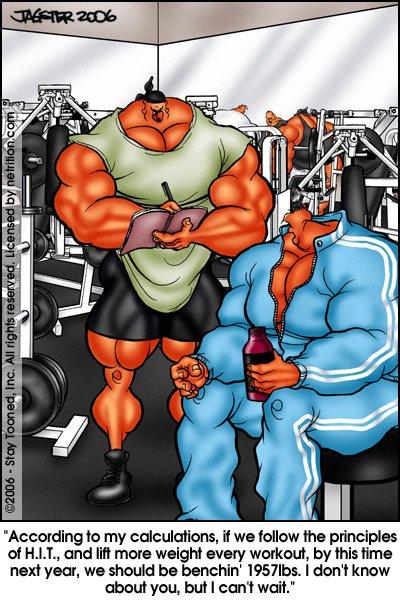 Musclehedz