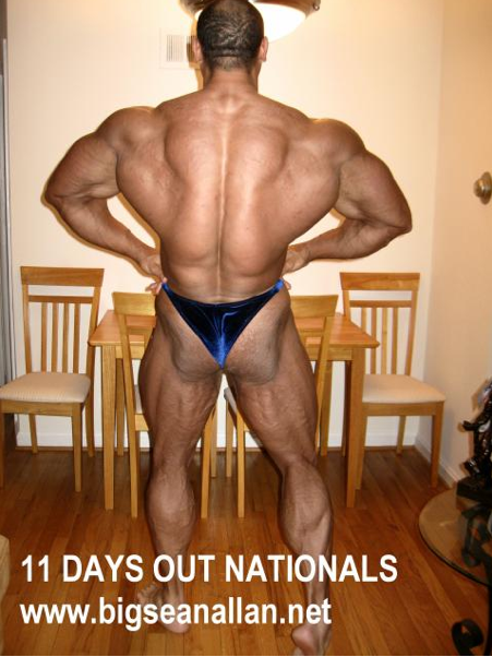 B.S.A 11 DAY OUT  NATIONALS