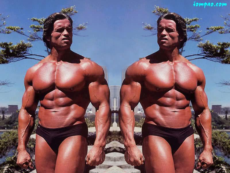 Fresh Arnold Schwarzenegger Desktop pics!!