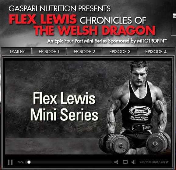 Chronicles Of The Welsh Dragon - FLEX LEWIS MINI-SERIES