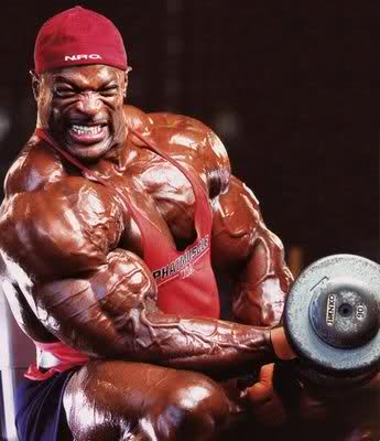 No, THESE are biceps!!