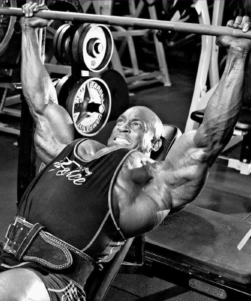 !!! INCLINE BARBELL/DUMBBELL PRESSES - 1 MOVEMENT, 20 POINTS OF VIEW !!!