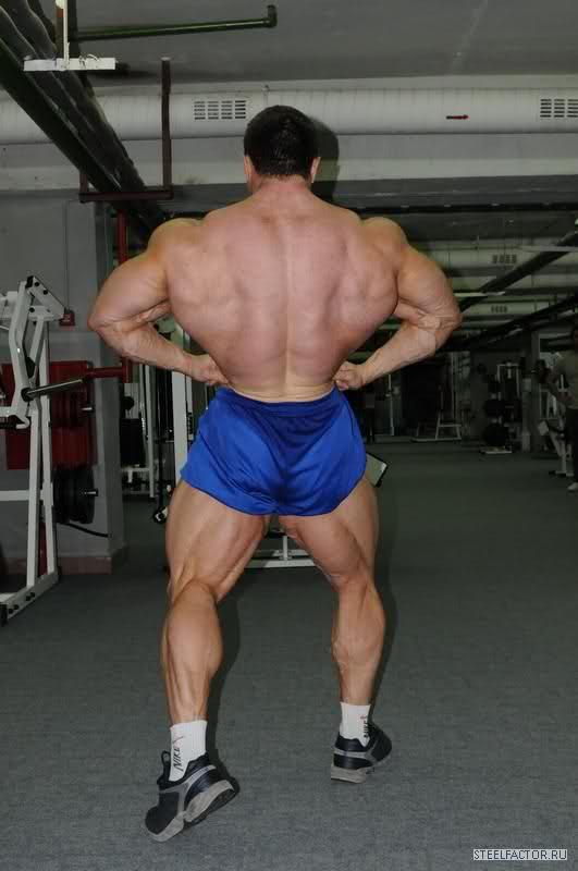 Sergey Shelestov's recent gym photos