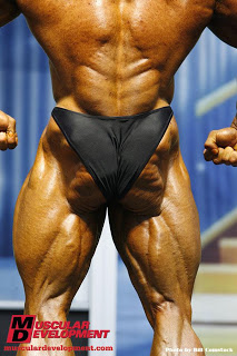 2 Flex Lewis from Arnold 09