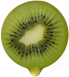 New vitamin E form extracted from kiwifruit