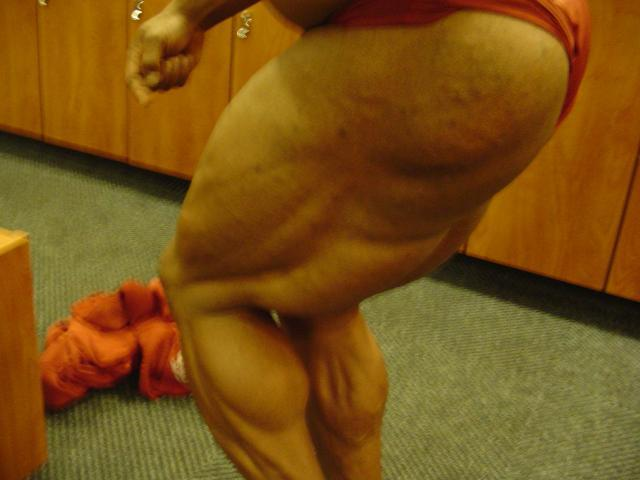 """HALEY """"THE COMET"""" ..5 WEEKS OUT!"""