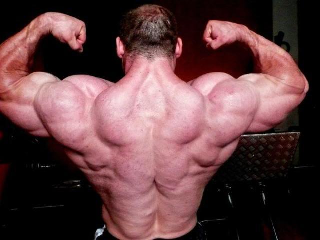 Alfonso Del Rio: 3 wks to Dallas: 133 kg
