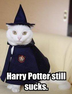 """""""Harry Potter and Half-Blood Prince"""" is breaking records"""