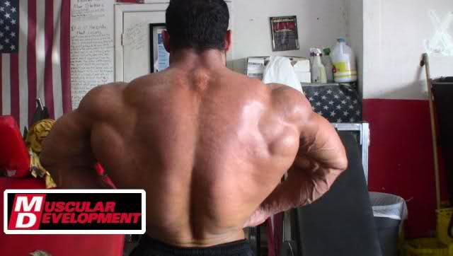 Tarek Elsetouhi - 1 day out from the 2009 Europa Super Show