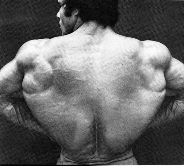 Best bodybuilding pic you have ever seen