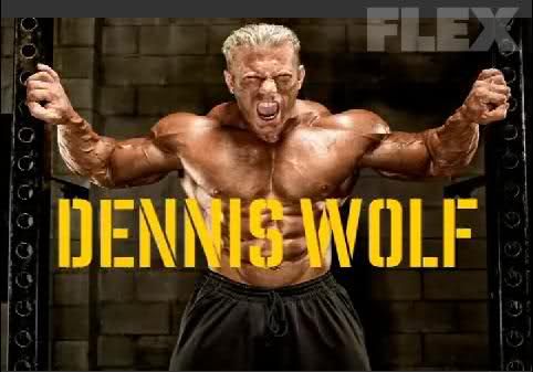 Dennis Wolf: The Next Chapter