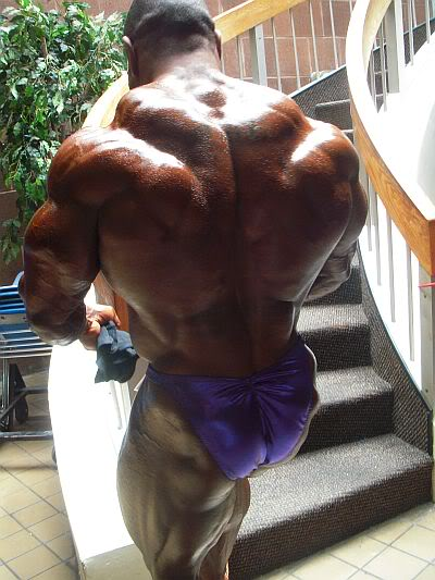 2010 IFBB New York Pro - competitors, updates, info & pics!