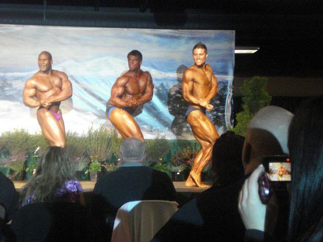 Creator's Pre-contest 2010