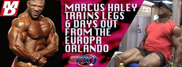 Europa Show Orlando, Florida  - April 29th - 30th (Updates)