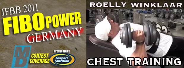Roelly Chest workout - Fibo Power