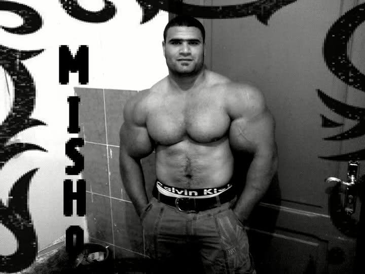 Moshtak Elgindy New Synthol Freak.