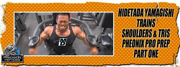 hidetada shoulders triceps phoenix part  1