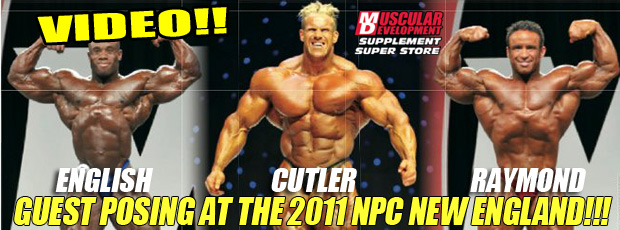 English ; Cutler and Raymond guestposing in New England