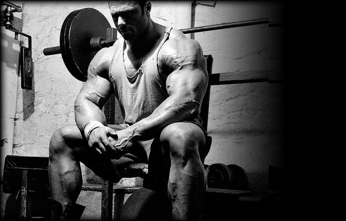 Frank Mcgrath (Updates) Official Thread