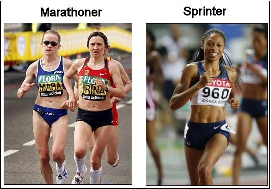 marathonervssprinterfemale 1