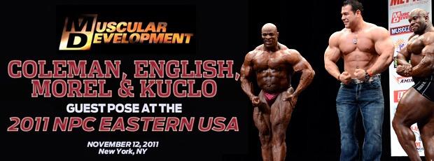 Morel Kuclo Easterns11 rot 1