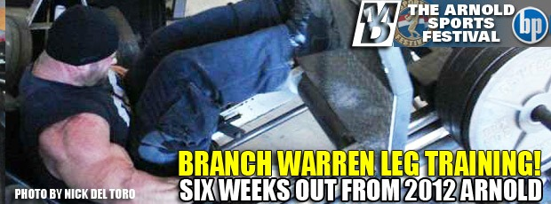 Branch trains legs 6 weeks out!