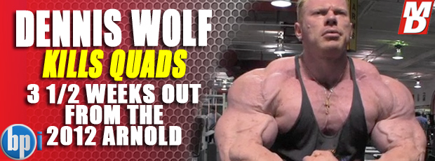 Wolf Kiils Quads! - 3.5 weeks out