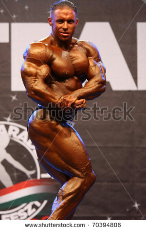 STAGE 4 - FIBO POWER Top 6 GUess