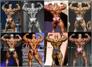 1 Ronnie Back Double Bicep Evolution 199 1