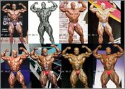 1 Ronnie Front Double Bicep Evolution 19 1