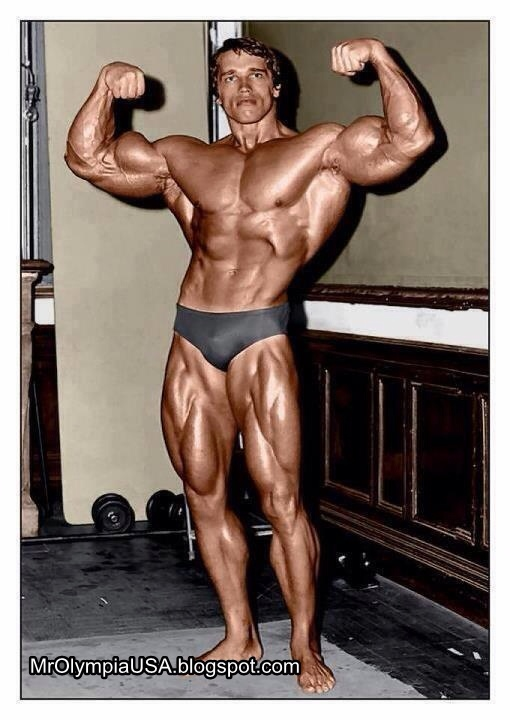 Top 5 Bodybuilders of all time?