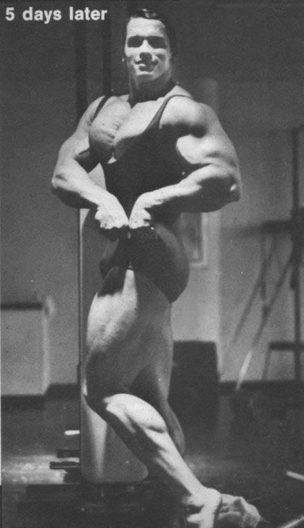 Arnold Schwarzenegger - training footage from 2013 and RARE pics!!