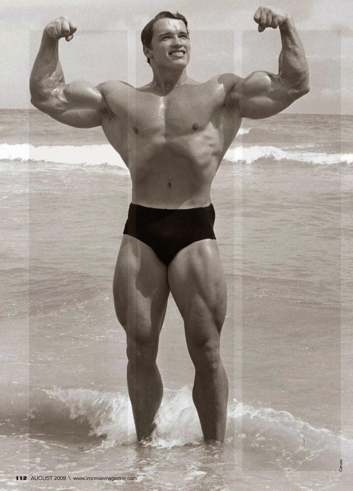 Arnold2 1