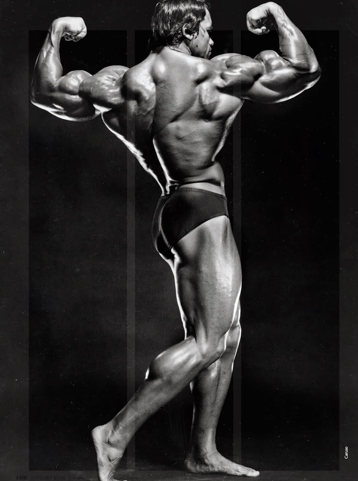 Arnold6 1