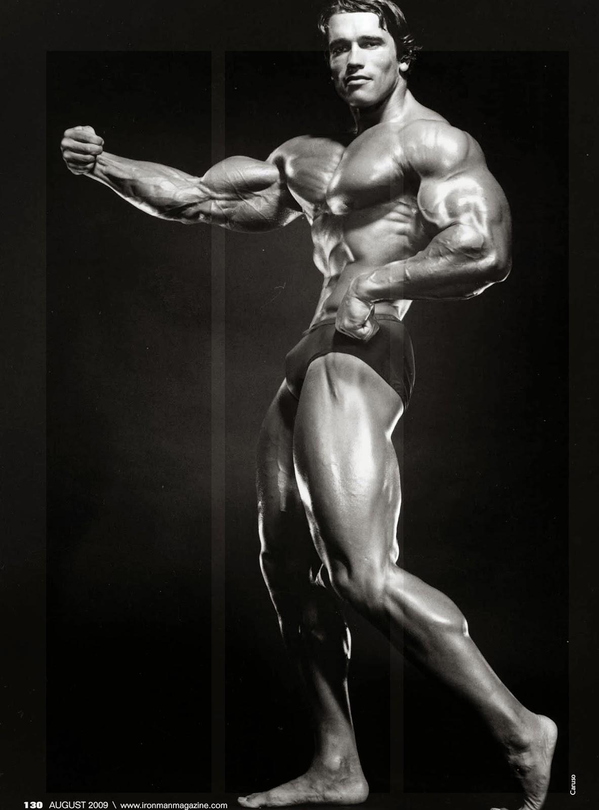 Arnold7 1