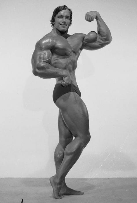Arnold Schwarzenegger - official updates!
