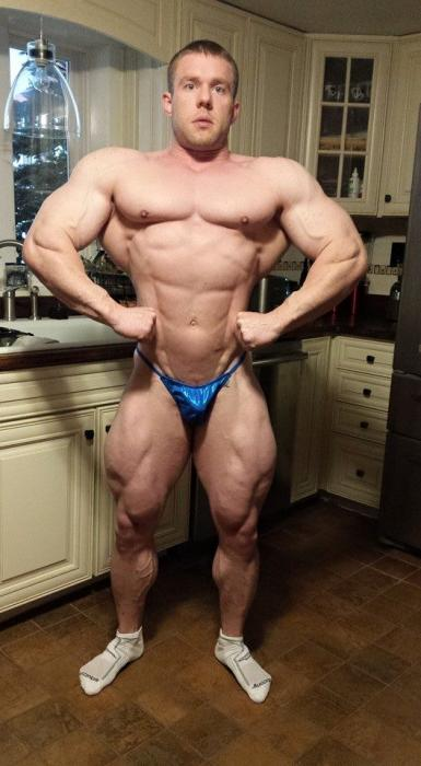 Road to 2015 new york pro ifbb